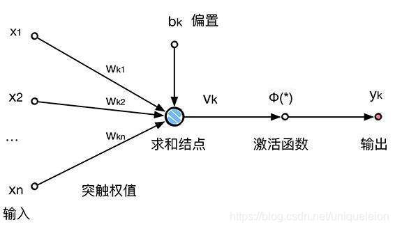 神经元简化图