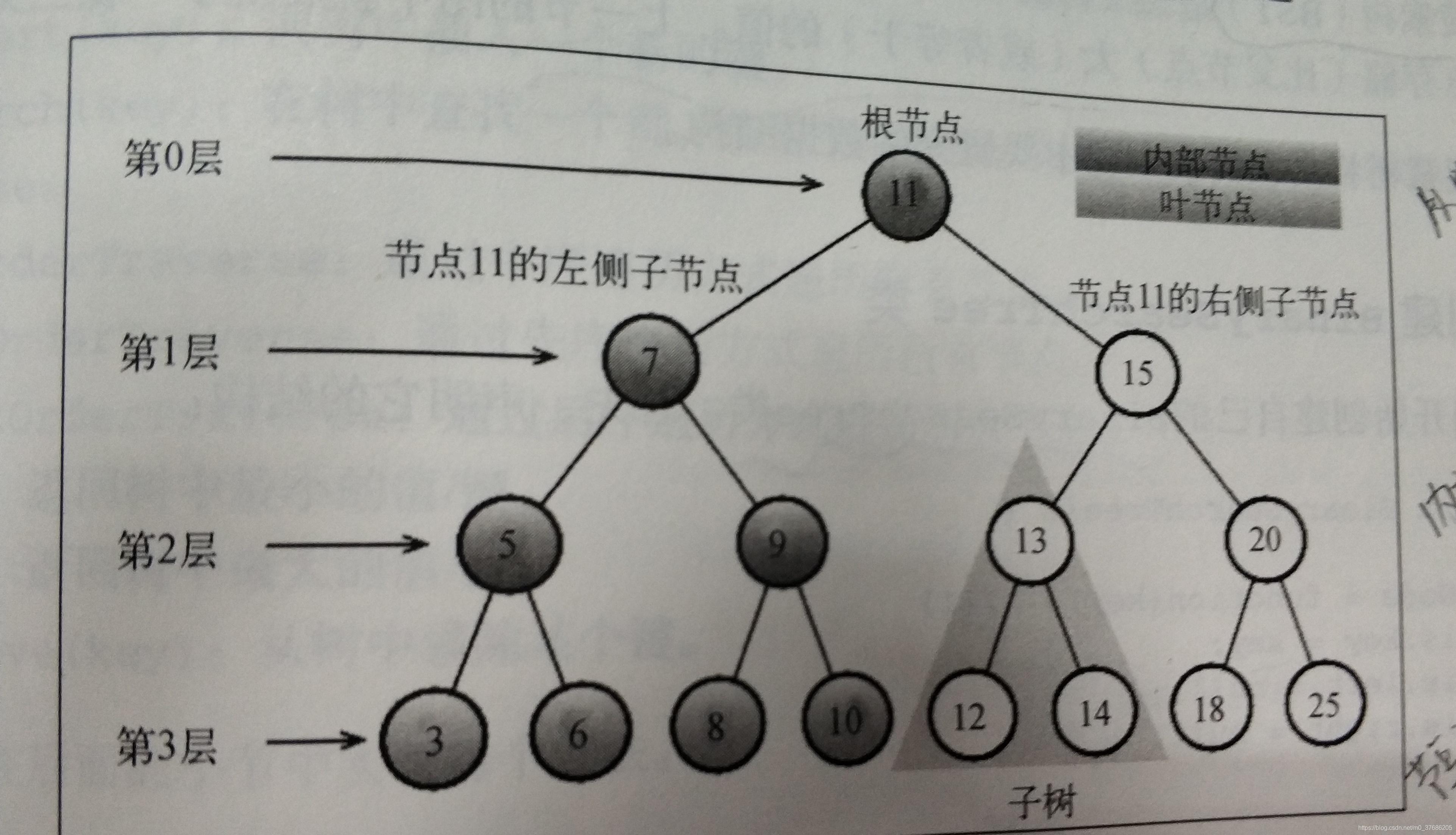 树的结构图