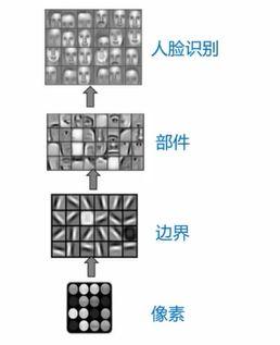 人口卷积化_人口普查图片