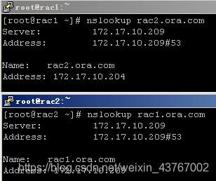 验证DNS解析