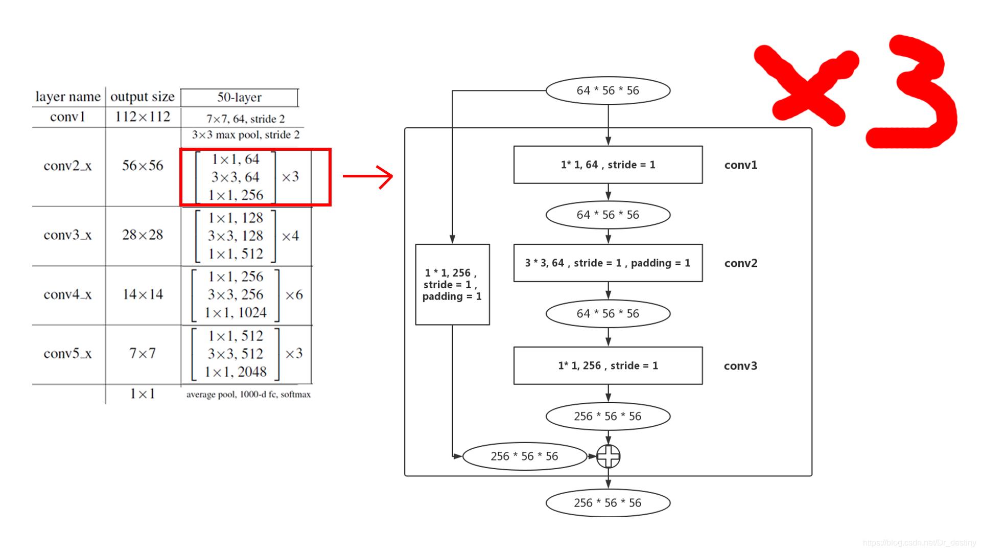 ResNet网络结构分析- Dr_destiny的博客- CSDN博客