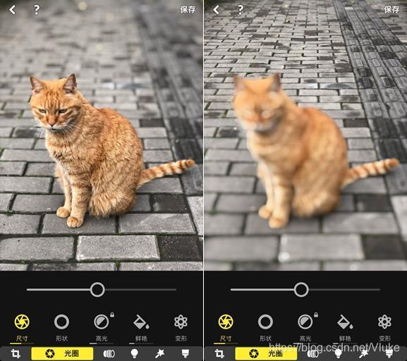 左:对焦于猫身;右:对焦于后地砖