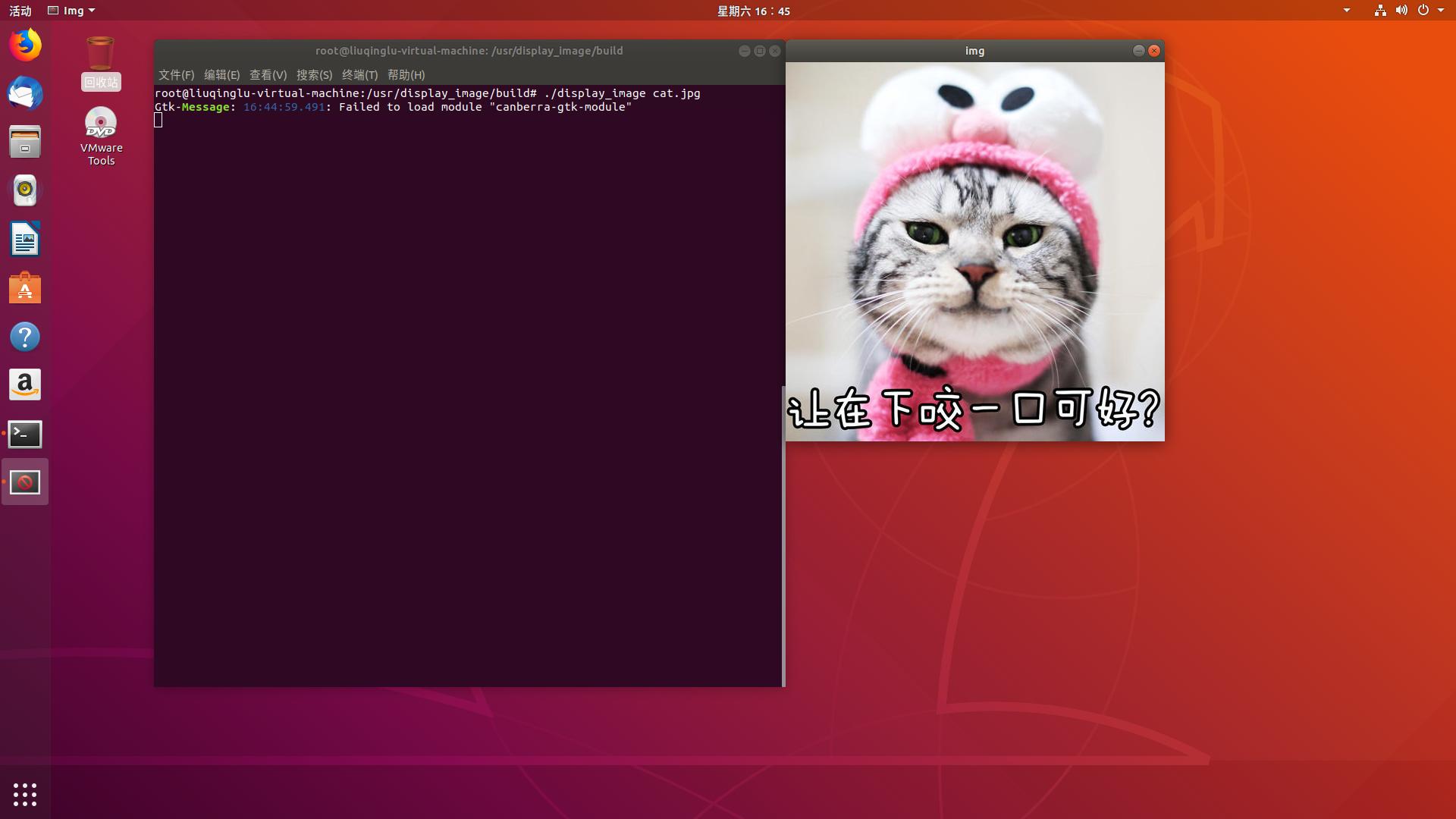 使用 opencv 显示猫片