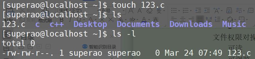 Linux---常用命令总结以及权限理解(超详细)