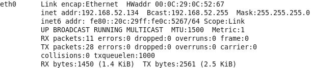 Linux系统的网络信息