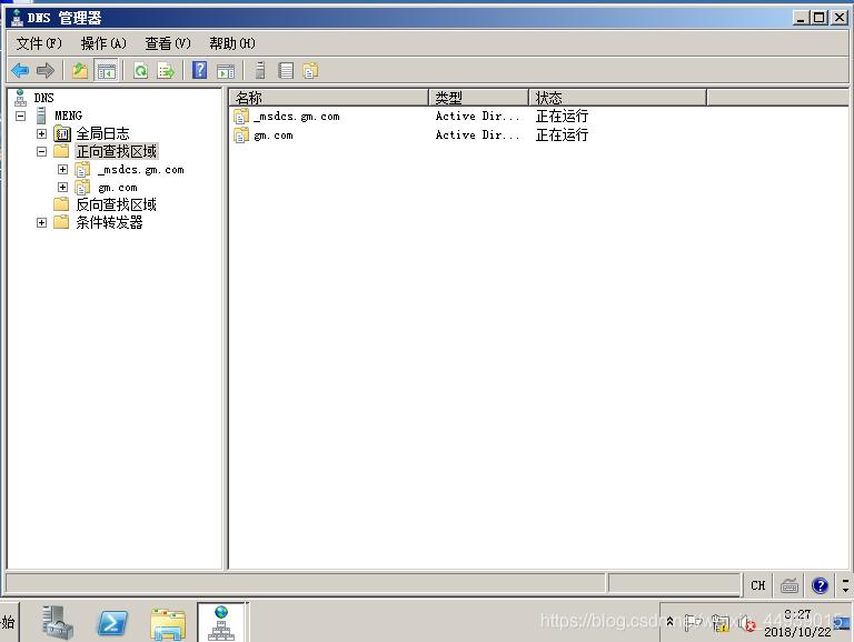 图1 DNS服务器界面