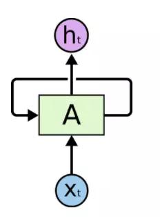 带循环的递归神经网络