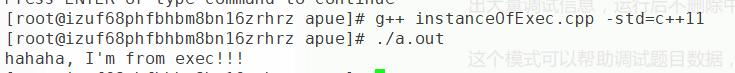 exec函数实例