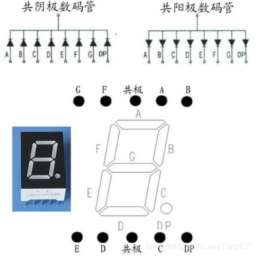 数码管内部结构