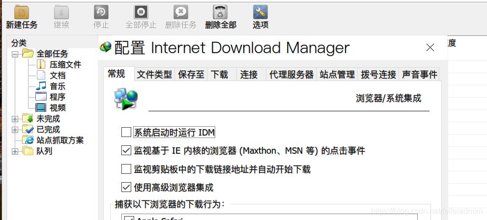 IDM选项窗口