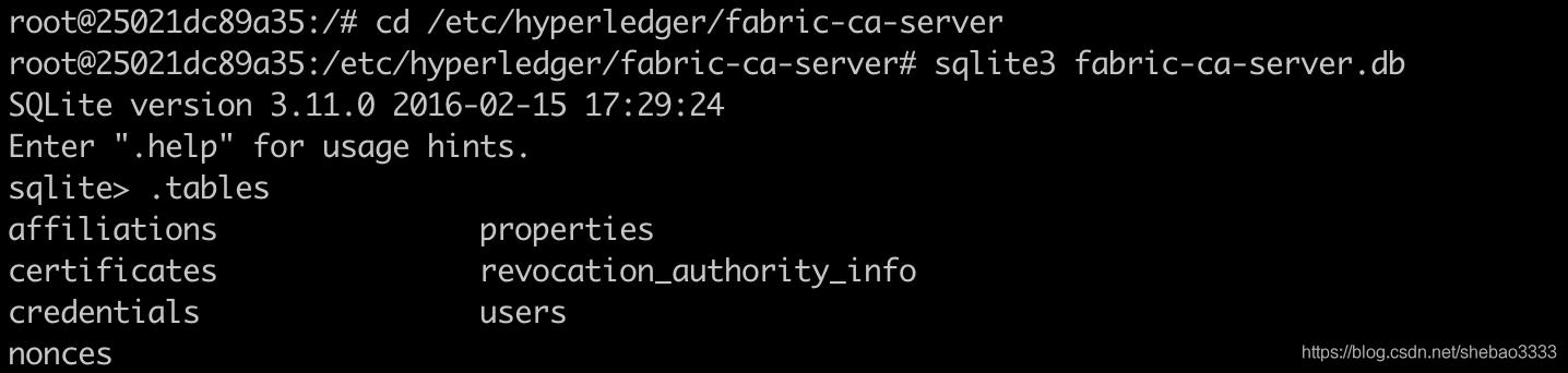 [外链图片转存失败,源站可能有防盗链机制,建议将图片保存下来直接上传(img-jBx8htwd-1576464749075)(fabric-ca-exploring/inspect-db.png)]