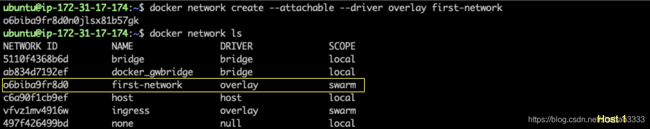 [外链图片转存失败,源站可能有防盗链机制,建议将图片保存下来直接上传(img-xgYKQWBi-1577184158827)(fabric-raft-multi-host/host1-overlay.png)]