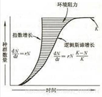 【机器学习】逻辑斯蒂回归概率计算和手动计算对比