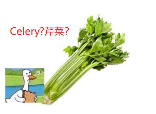 【Django】文件上传以及celery的使用