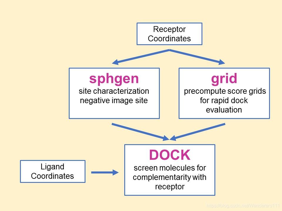 DOCK6.9工作流程