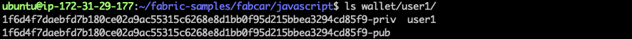 [外链图片转存失败,源站可能有防盗链机制,建议将图片保存下来直接上传(img-DwdYfQhm-1578362210215)(hyperledger-api-server-impl/user1-dir.png)]
