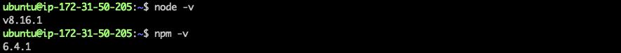 [外链图片转存失败,源站可能有防盗链机制,建议将图片保存下来直接上传(img-A5uwBfGl-1578362210215)(hyperledger-api-server-impl/npm-node.png)]
