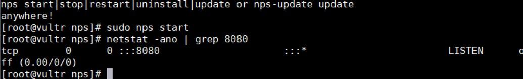 安装并启用nps服务