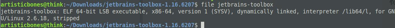 file命令