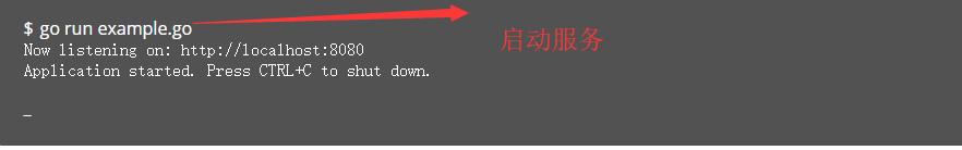 [外链图片转存失败,源站可能有防盗链机制,建议将图片保存下来直接上传(img-PzanzAuu-1581055410522)(/img/goImage/iris.png)]