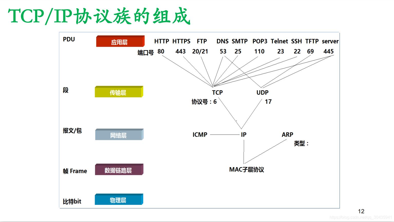 五层模型常用协议