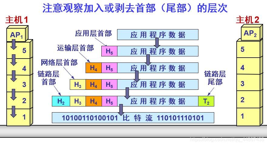 计算机网络体系结构