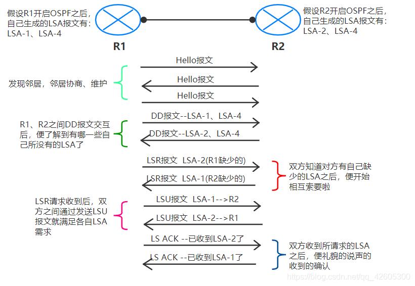 OSPF报文-简单时序图