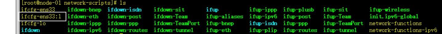 复制的 ifcfg-ens33:1
