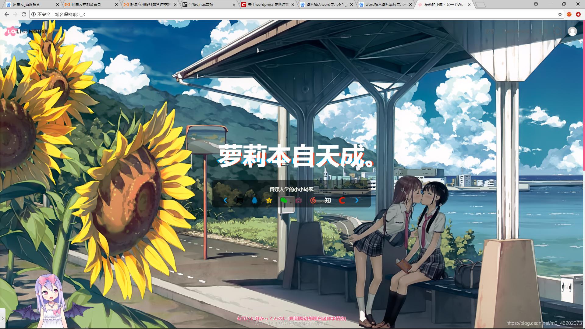 【Wordpress建站】Sakura主题的使用、美化与避雷插图