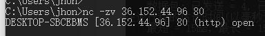 TCP协议探测