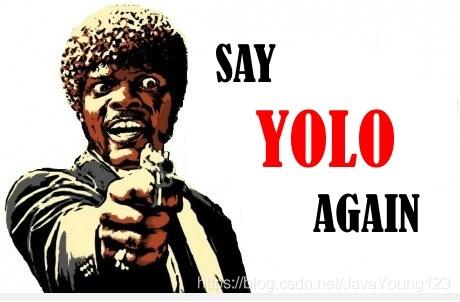 YOLO官方图片
