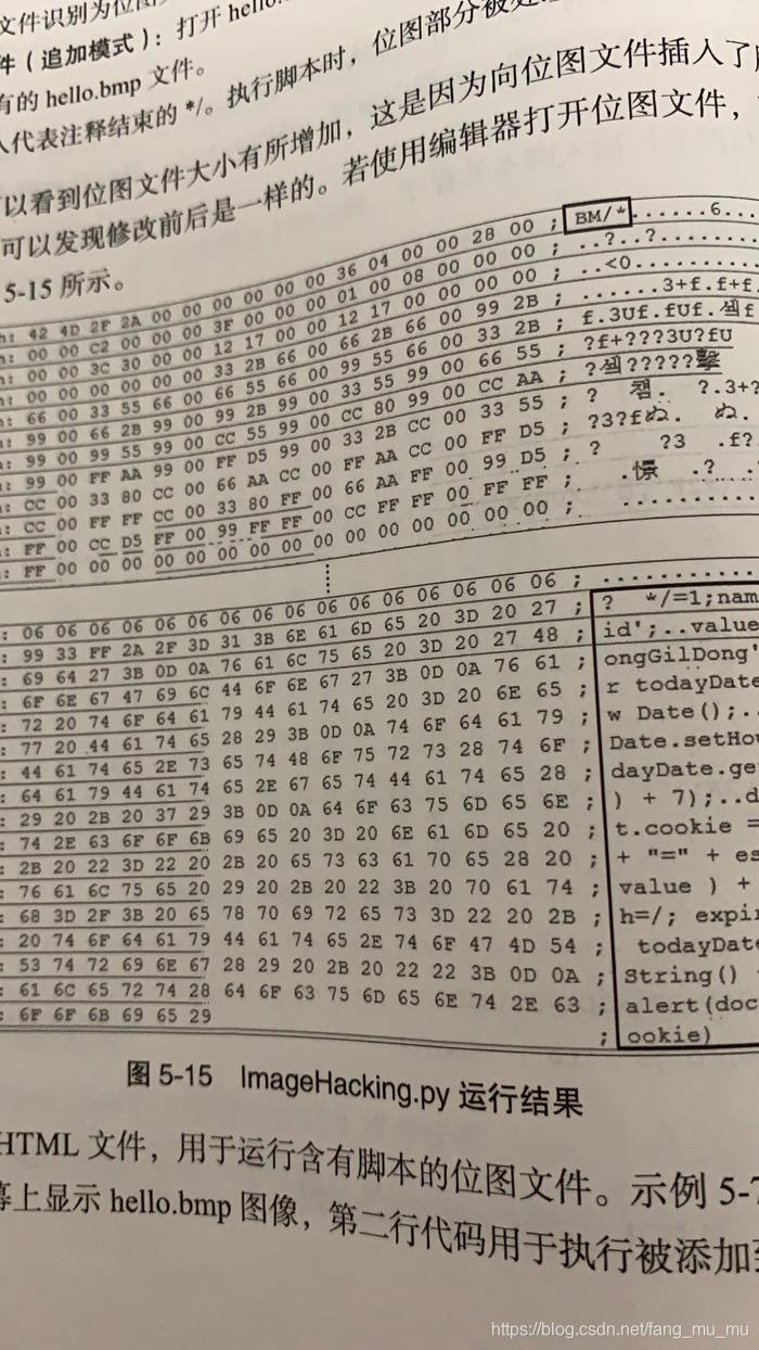 Python 图片注入js