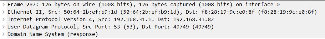 DNS数据包