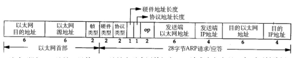 ARP数据报格式