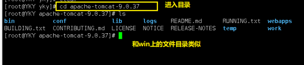 一文带你了解阿里云Linux服务器的基本操作插图(12)