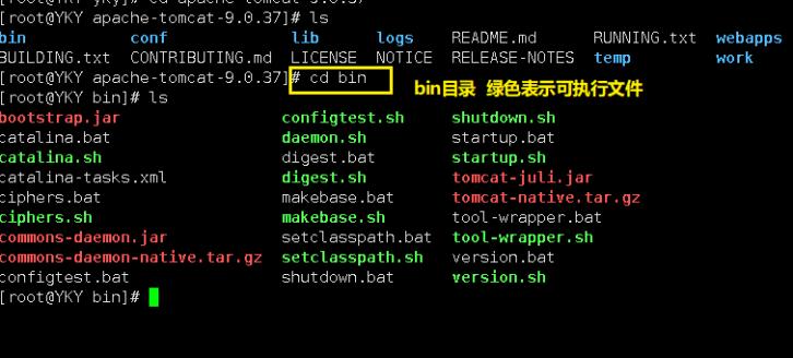 一文带你了解阿里云Linux服务器的基本操作插图(13)