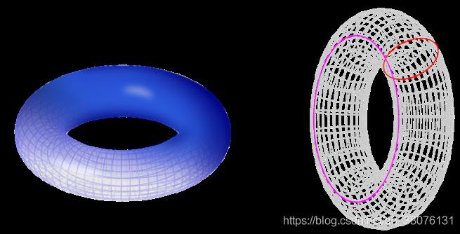 图10 环面示意图