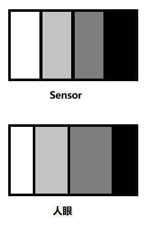 Sensor和人对同一灰度变化的感受