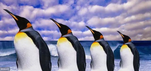 带你真正认识Linux 系统结构插图(2)