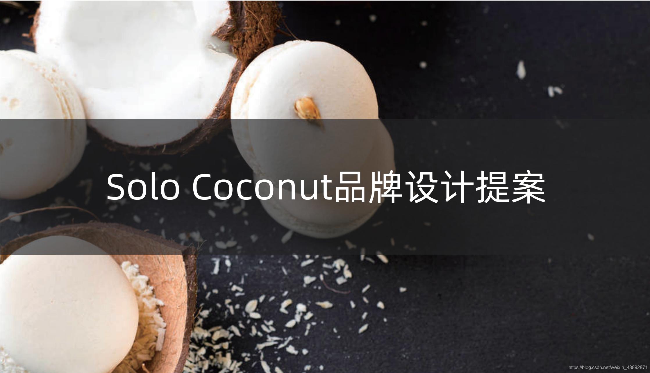 LOGO-SOLO COCONUT—-餐饮椰子LOGO设计-提案