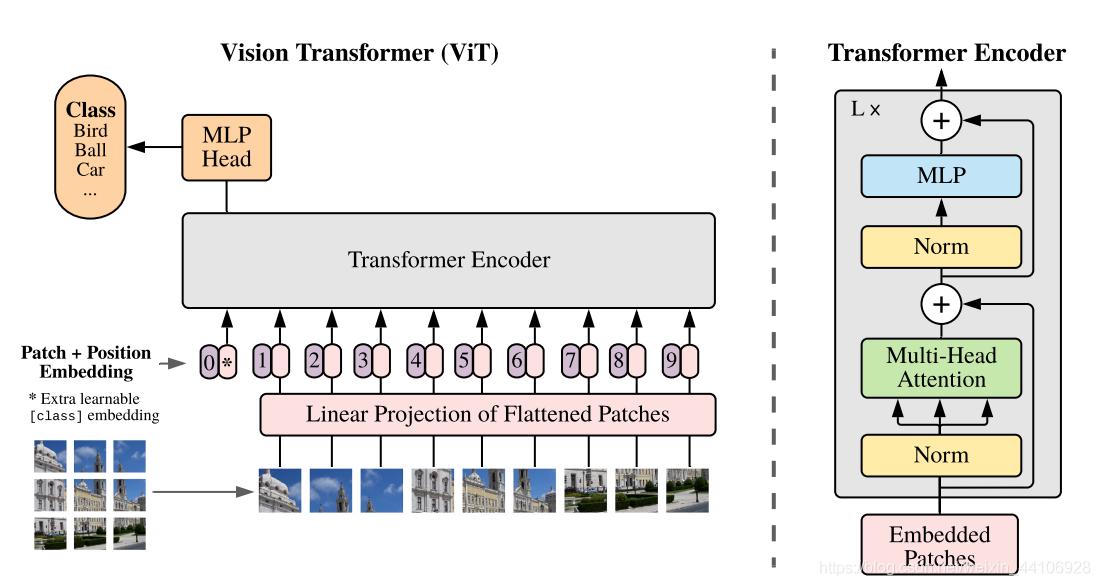 Vision Transformer整体架构