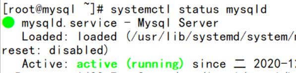 发现mysql已经可以正常启动