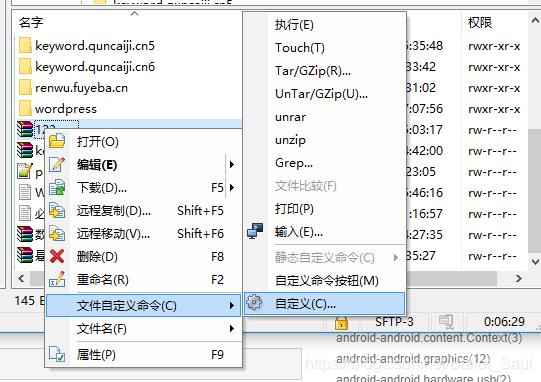 任意文件右键→文件自定义命令→自定义