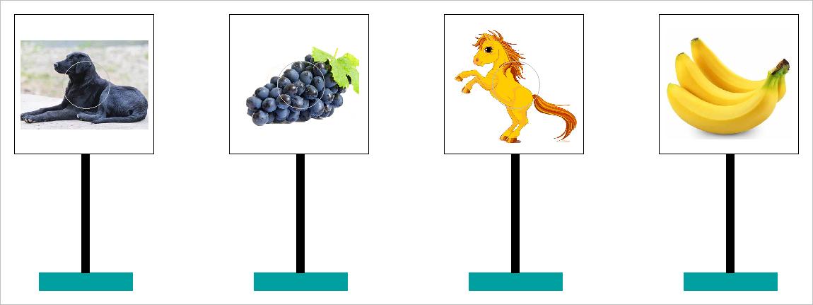▲ 靶标牌上的动物和水果图案