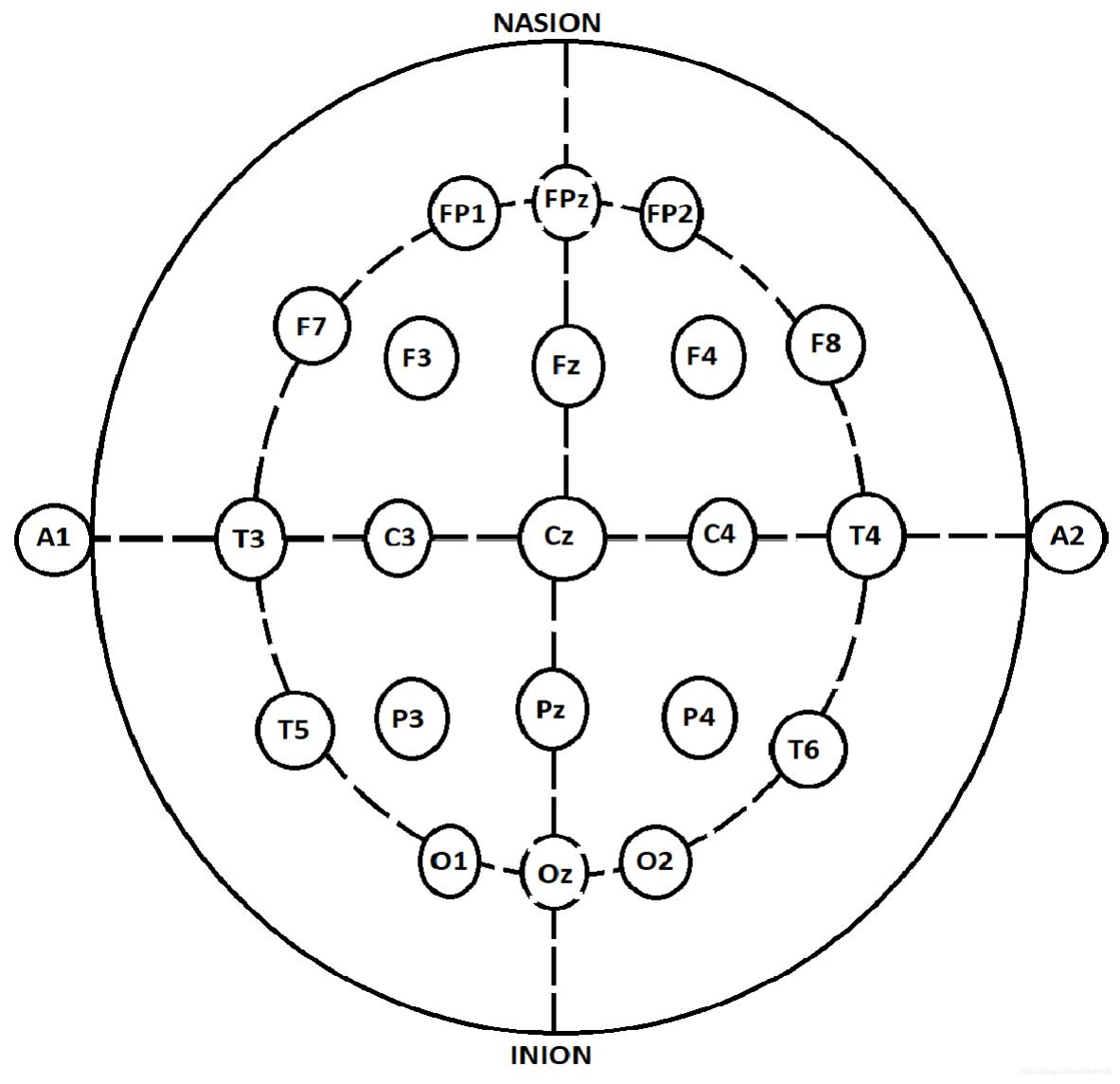 图1 EEG信号采集中的10–20系统的电极排布