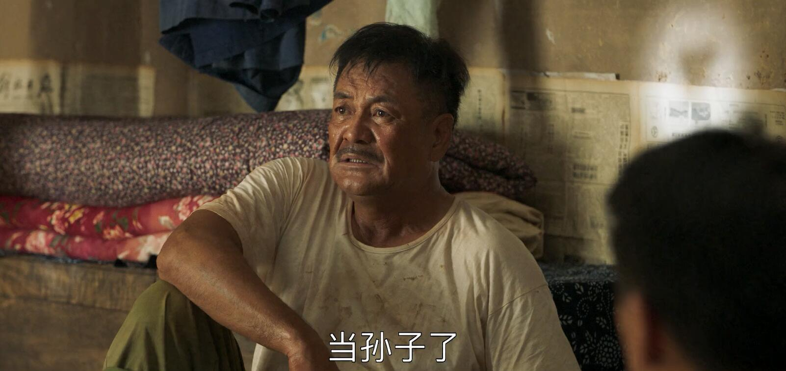影视剧 - 山海情原声版 无水印-不知君