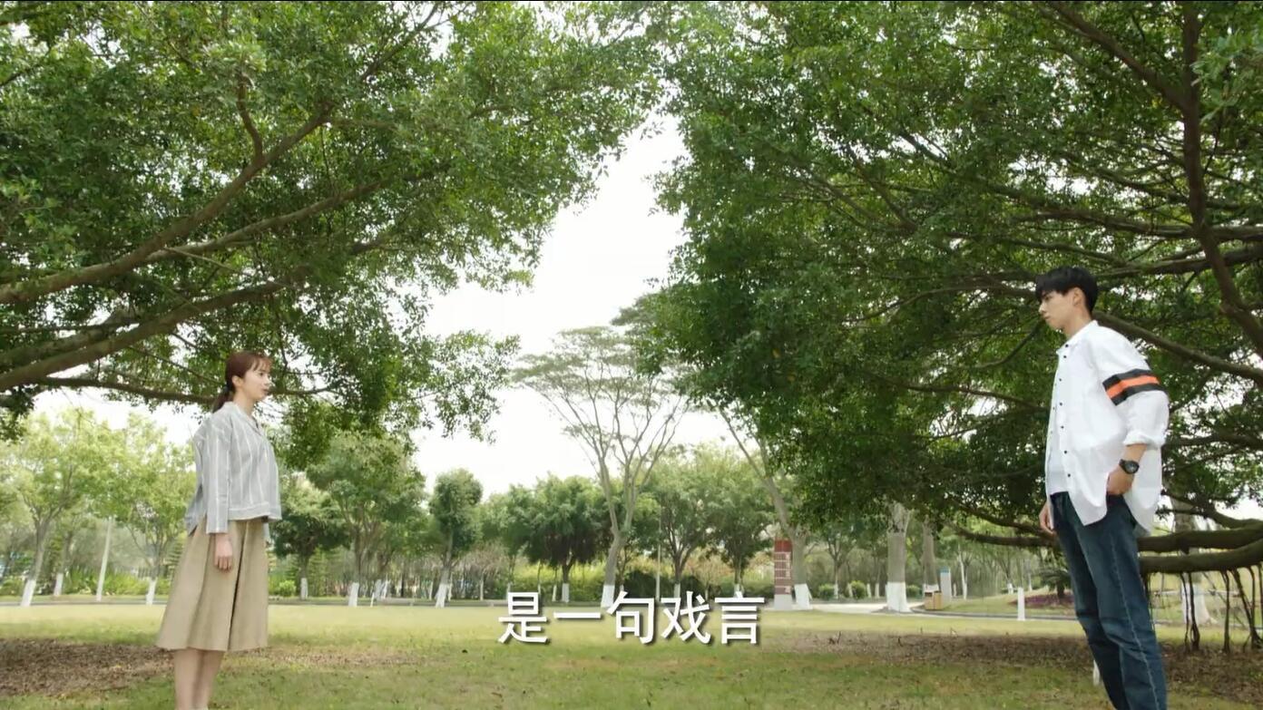 影视剧 - 暗恋橘生淮南 [持续更新] 无水印1080P