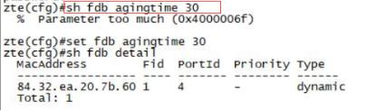 图1-3 查看MAC地址表结果示意
