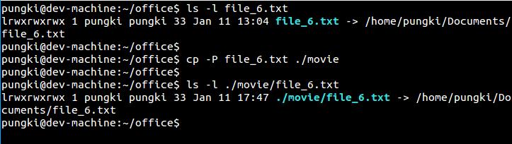Copy using -P option