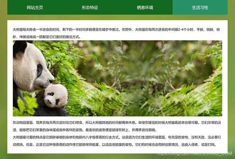 熊猫网页成品